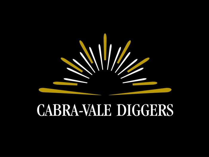 CVD Logo - Black